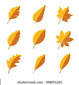 Set of different autumn tree leaves on white background. Vector Illustration. EPS outline file.