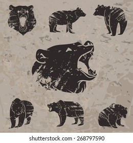 Set of different bears with grunge design. Vector illustration