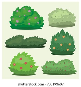 Set of different bushes on a light background
