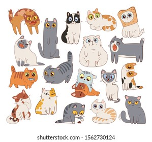 Set of different cat breeds. Funny cartoon character. Vector illustration. Isolated on white background