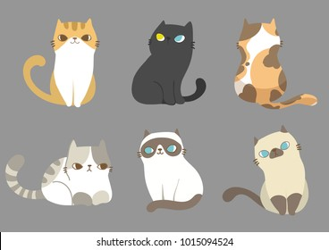 Set of different cats breeds in different poses on grey background. Vector illustration character design.