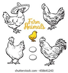 Set of different chickens, vector sketch hand-drawn illustration isolated on white background. three hens, rooster chick and different eggs. chicken sombrerro. bird family