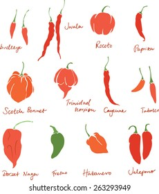 Set of different chili peppers vector doodle set