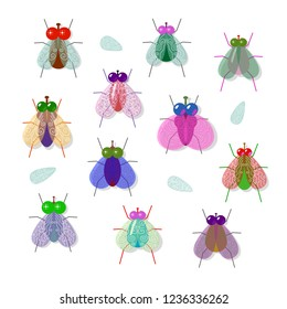 Set of different, colorful, funny flies