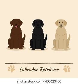 Set of different colors of Labrador Retriever: black, fawn, brown. Vector Illustration of three sitting dogs. Cartoon characters.