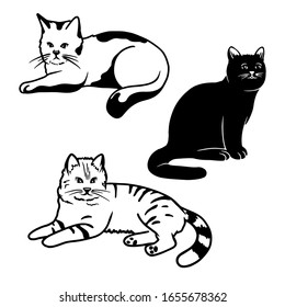 Set of different cute cats isolated on a white background. Vector illustration