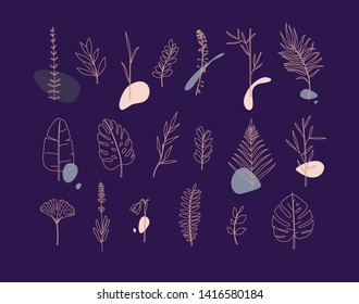 Set of different forms leaves in minimalism flat style on blue background