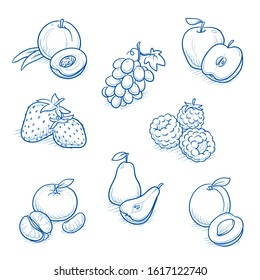 Set of different fruits: apple, pear, grape, peach, clementine, strawberry, raspberry and apricot. Hand drawn doodle vector illustration.