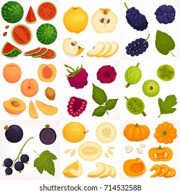 A set of different fruits and berries. Vector illustration. Whole, halves and sliced fruit.