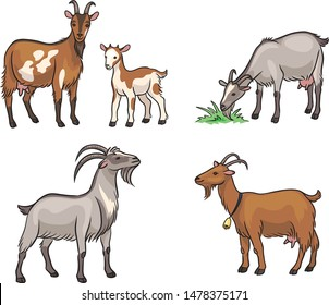 Set of different goats. Vector illustration. EPS8