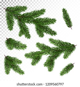 A set of different Green, realistic branch of fir. Fir branches. Isolated on white. Christmas illustration.Vector. Eps10.