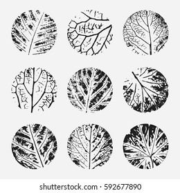 Set of different grunge textures. Hand drawn Prints of leaves. Texture in circle. Vector illustration. Grunge shapes