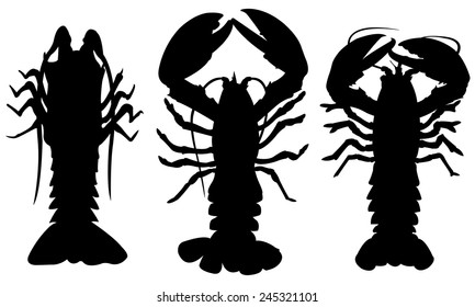 set of different lobsters isolated