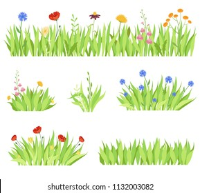 Set of different natural garden flowers in the grass. Fresh garden flower beds on a white background. Vector modern illustration