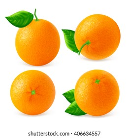 Set of different oranges fruits views isolated on white background. Realistic vector illustration.