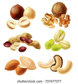 Set of different peeled and with peel nuts realistic vector illustrations isolated on white background. Full and cracked hazelnut, walnut kernel halves, peanuts, pistachio, almond, dried cashew nuts