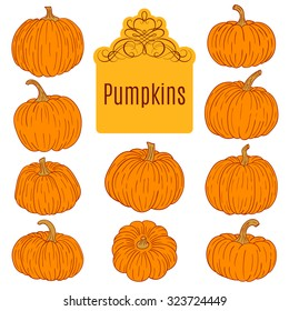 Set of different pumpkins, illustration isolated on white background