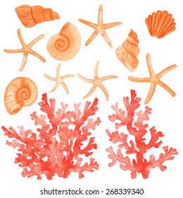 Set of different sea shells,corals and starfish. Watercolor vector illustration. Global color used.