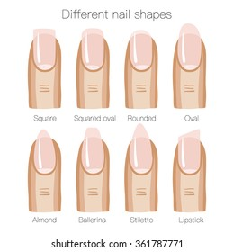 Set of different shapes of nails. Vector illustration
