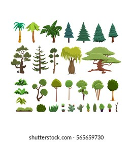 A set of different species of trees and shrubs in a flat style. Vector illustration deciduous and coniferous trees and bushes on white backgrounds.