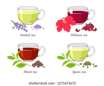 Set of different tea in glass cups isolated on white background. Herbal, Hibiscus, Green, Black. Vector illustration in cartoon flat style.