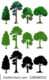 Set of different tree illustration