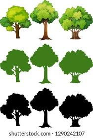 Set of different tree illustration