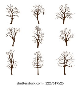 Set of different trees without leaves in autumn or winter isolated on white background, leafless branches and trunks, vector illustration