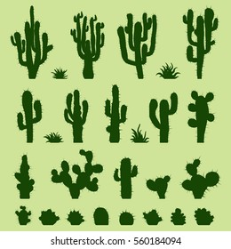 Set of different types of green cactus plants. Vector illustration