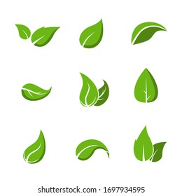 Set of different types of leaves. Vector illustration.