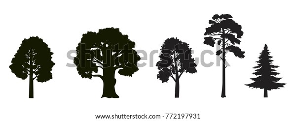 Set Different Types Trees Maple Oak Stock Vector Royalty Free