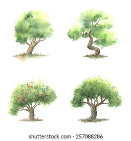 Set of different types watercolor trees