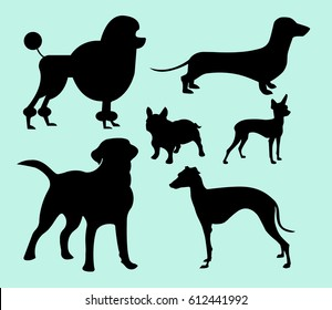 Set of different vector pets silhouettes for design use. The different monochrome dog breeds