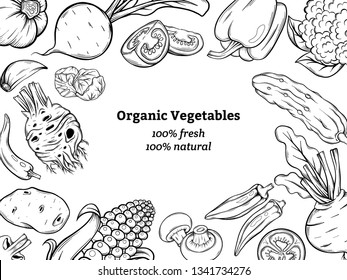 set of the different vegetables. Vintage hand drawn sketch style. Frames for decoration, menu. Ink, linear graphic, Engraved style