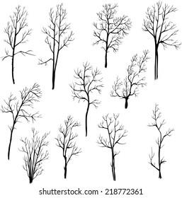 set of different winter trees, vector illustration, hand drawn design element