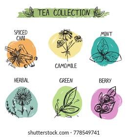 Set of diffrent tea types logos. Hand drawn set.