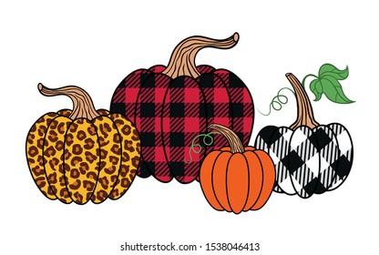 Set of diverse pumpkins. Leopard, orange and buffalo plaid pumpkin. Happy Thanksgiving . Harvest season. Vector illustration. Clip Art.