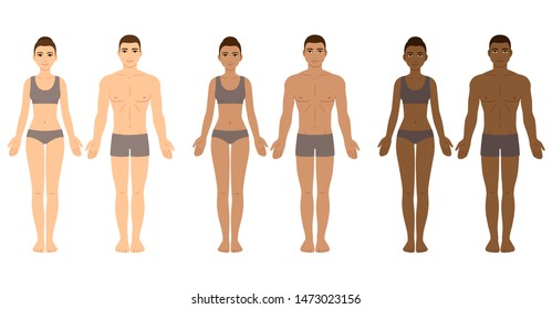 Set of diverse skin tone men and women body templates. People in underwear with different complexions. Ethnicity vector clip art for medical infographics and fashion illustration.
