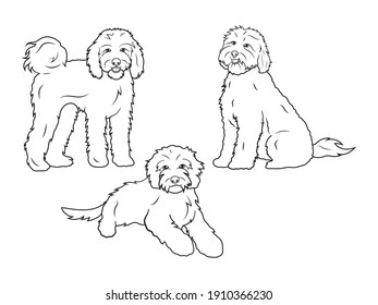 Set of dog breeds Goldendoodle. Collection of portraits fluffy Goldendoodle dogs. Black and white of illustration a cute pets. Tattoo Groodle.