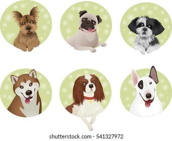 Set of Dog Cartoon Illustrations. EPS10