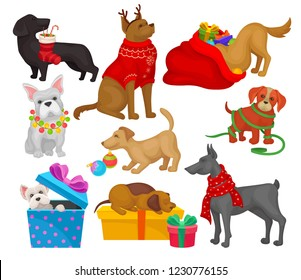 Set of dogs with Christmas objects. Home pets. Flat vector elements for greeting cards or posters