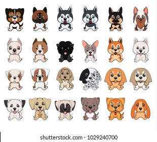 a set of dogs of different breeds, 24 puppies of different colors, types of ears, muzzles
