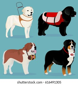 Set of dogs rescuers and helpers vector illustration
