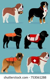 Set of dogs rescuers vector illustration