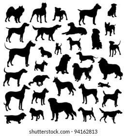 Set of dogs silhouette. Vector.