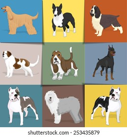 Set of dogs with square background. Vector eps10.