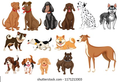 Set of dogs white background illustration