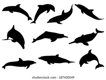 dolphin silhouette images stock photos vectors shutterstock