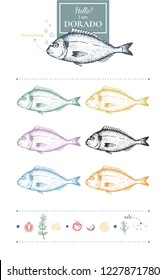 Set of dorado images. Unique hand-drawn silhouettes of dorado+lemon slices, black pepper, tomato, garlic, rosemary, salt. Yellow, grey, blue, green, red, pink. Vector. Isolated on white.