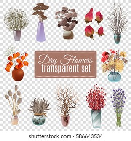 Set of dry flowers bouquets in vases of various shapes and sizes for decoration on transparent background flat vector illustration